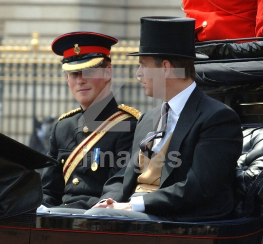 Prince Harry and  Prince Andrew Duke of York